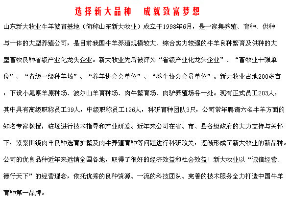 春江标准化养牛场