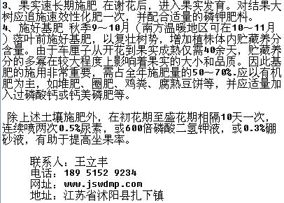 电路 电路图 电子 原理图 406_291