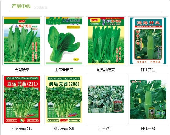 油麦菜――叶菜种子,广东广州哪里性价比高?