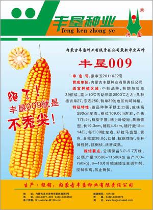 内蒙古丰垦种业丰垦009玉米种子