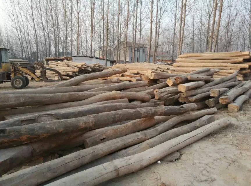 云南省丽江市老榆木原木板材